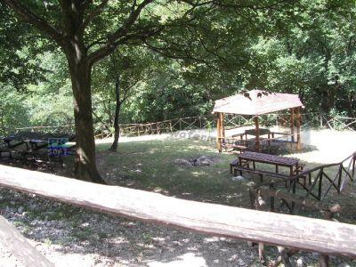 normal_Area_attrezzata_per_picnic.jpg