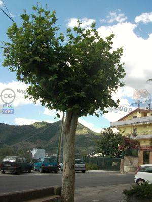 normal_Borgo_Valle_-_La_piazza.jpg