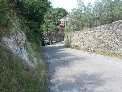 normal_Castagneto_-_Strada_che_porta_a_Valle%281%29.JPG